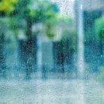 朝礼ネタ・会社スピーチなどに使える面白い雑学・おすすめ豆知識(梅雨っていつからいつまで?)