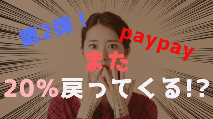 やたら当たるくじって何?PayPay新規キャンペーンはいつから?詳細発表!